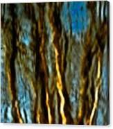 Dark Wood Canvas Print