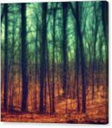 Dark Woods Canvas Print