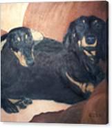 Daschounds Canvas Print