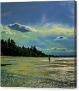 Dash Point State Park Canvas Print