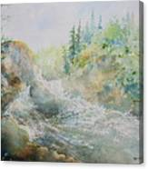 Dave's Falls Canvas Print
