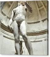 David By Michelangelo Pencil Canvas Print