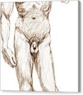 David Sketch Canvas Print