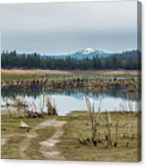 Davis Creek And Maiden Peak Canvas Print
