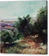 Davis Mountain Canvas Print