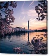 Dawn Blossoms Canvas Print