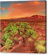 Dawn Light Capitol Reef National Park Utah  Canvas Print
