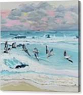 Dawn Pelicans Canvas Print
