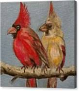 Dawn's Cardinals Canvas Print