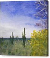 Day In Arizona Desert Canvas Print