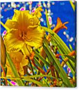 Day Lilies In The Sky With Diamonds  Canvas Print