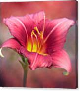 Day Lily Deep Canvas Print