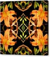 Day Lily Square Dance Canvas Print