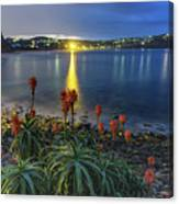 Daybreak And Cloudy Seascape And Aloe Vera Canvas Print