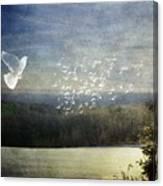 Daybreak At Cedar Hill Canvas Print