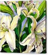Daylilies 2 Canvas Print
