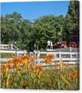 Daylilies And Oxen Wagon Canvas Print