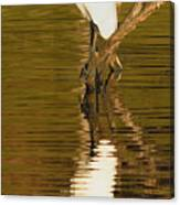 Days End With One Egret Canvas Print