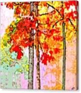 Daytime Diversity Canvas Print