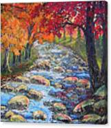 Dazzling View From The Rapidan Canvas Print