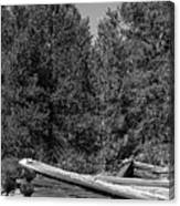 Ddp Djd B And W 1880's Cabin Ruins In Montana 3 Canvas Print
