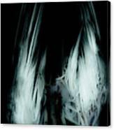 Dead Bird Grey Canvas Print