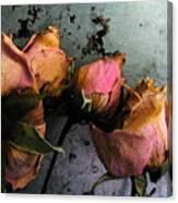 Dead Roses 2 Canvas Print