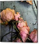 Dead Roses 3 Canvas Print
