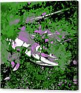 Dead Salmon 2 Canvas Print