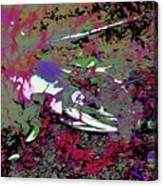 Dead Salmon 6 Canvas Print