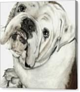 Dean' Buddy Canvas Print