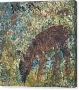 Dear Or Deer Being Hunted Canvas Print