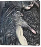 Death By Decit Canvas Print