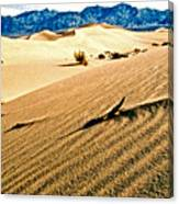 Death Valley National Park Canvas Print