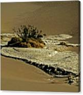 Death Valley Salt Canvas Print