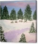 December Afternoon Canvas Print