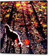 December Walk In The Blue Ridge Canvas Print