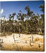 Deception Bay Conservation Park Canvas Print