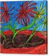 Deck Plant Canvas Print
