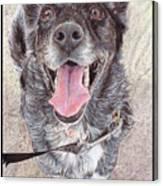 Dedicated Dog Canvas Print