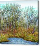 Deep Forest River Canvas Print