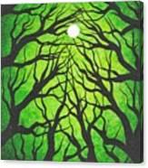 Deep Green Forest Canvas Print