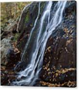Deep Hallow Falls Virginia Canvas Print