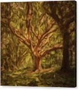 Deep In Sherwood Canvas Print