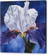 Deep Purple Dream Canvas Print