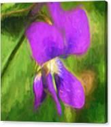 Deep Purple - Wildflower Art Canvas Print