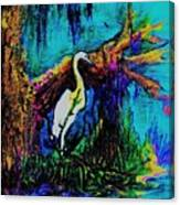 Deep South Canvas Print