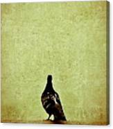 Deep Thought Canvas Print