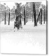 Deep Winter II Canvas Print