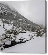 Deep Winter River Canvas Print